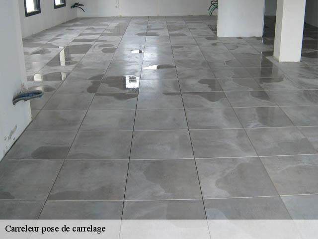 Carreleur pose de carrelage  38550
