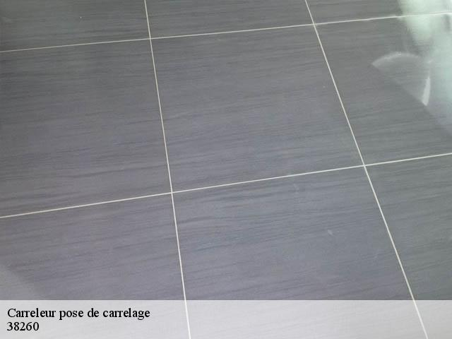 Pose de carrelage  38260